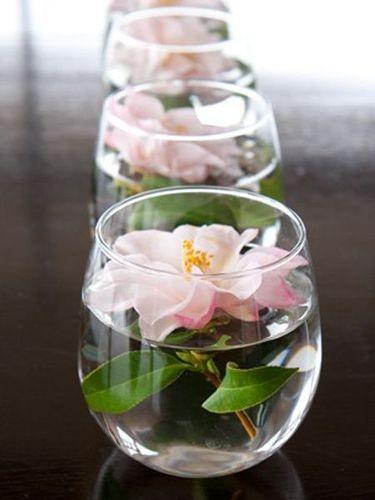 вазы - аквариумы